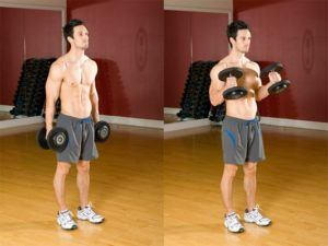 dumbbell arm workout routine (7)